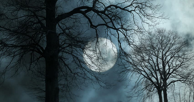 10 Dark Stories Ancients Told About Our Night Skies