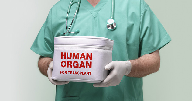 10 Organ Recipients Who Took On The Traits Of Their Donors