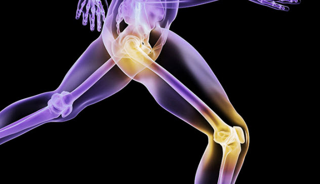 10-biomaterial-joint-replacement