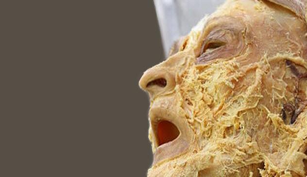 5b-dead-head-grimace
