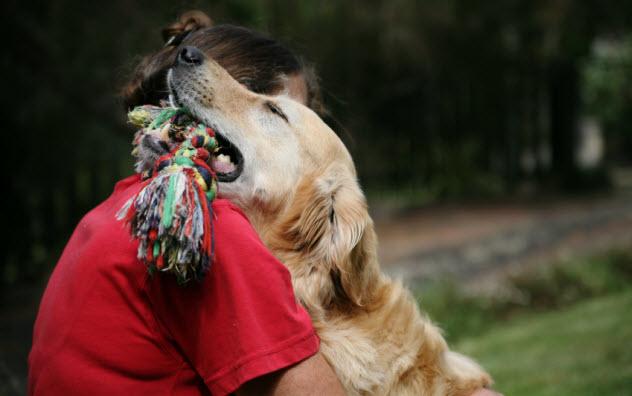 8-dog-hug_000005309842_Small