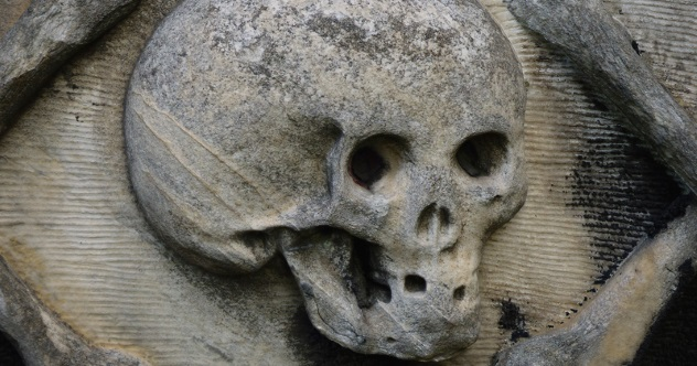 Photo of 10 Facts That Will Change How You View The Black Death