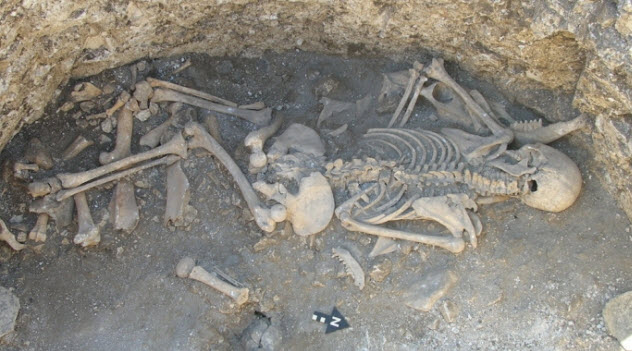 8-Celtic-Hybrid-Boneyard