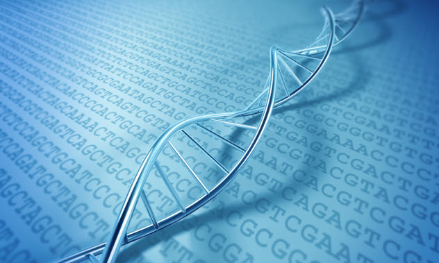 8-dna-code_50827776_SMALL