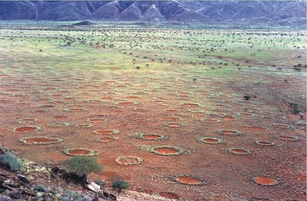 8-fairy-circles