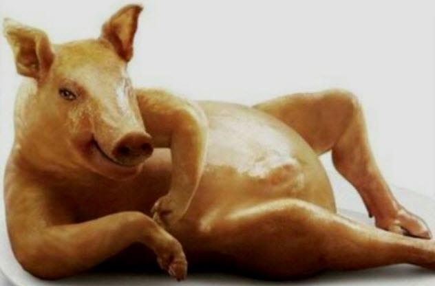 8c-pig-seducer