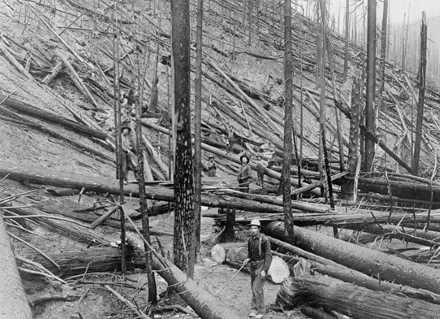 Great Fire of 1910