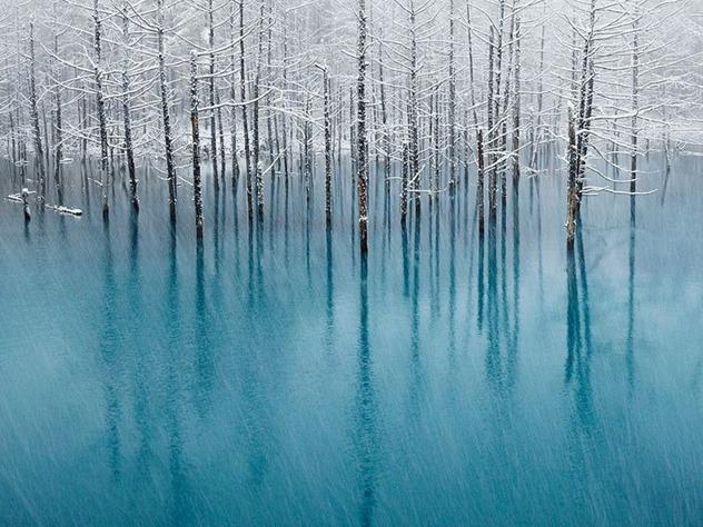 blue-pond-12