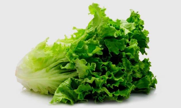 1b-green-lettuce_13516616_small