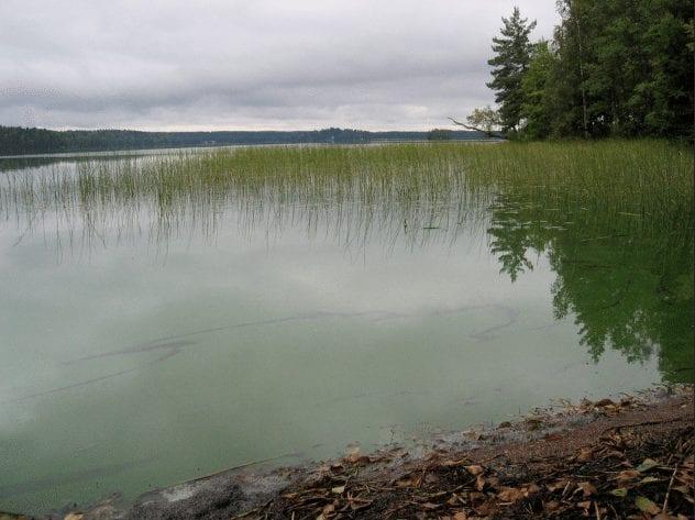 lake-bodom