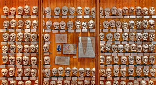 6-mutter-museum