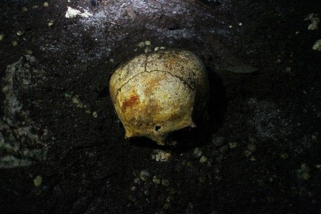 sac-uayum-skull