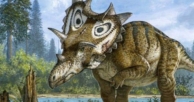 Paleontology - Magazine cover