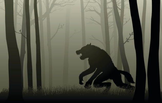 10a-werewolf-526567034