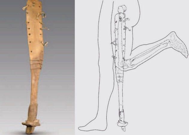 7-leg-with-horse-hoof