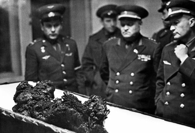 vladimir-komarov-remains
