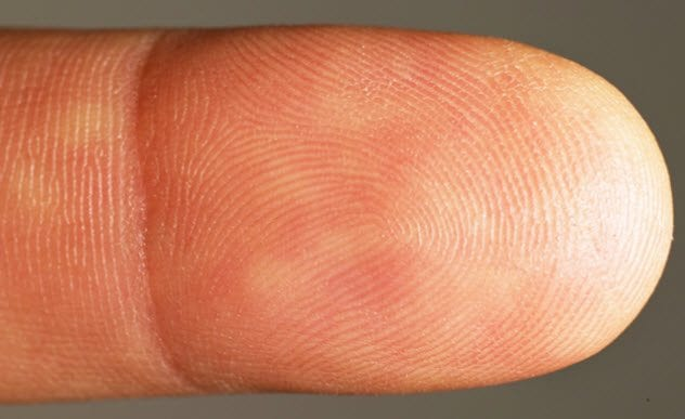 1a-fingerprint-495205664