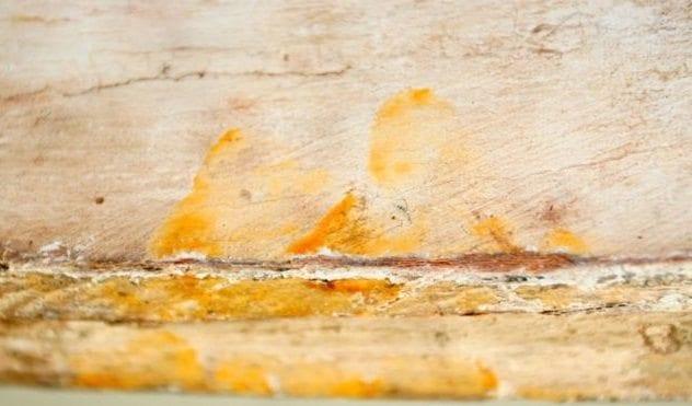 sarcophagus-fingerprints