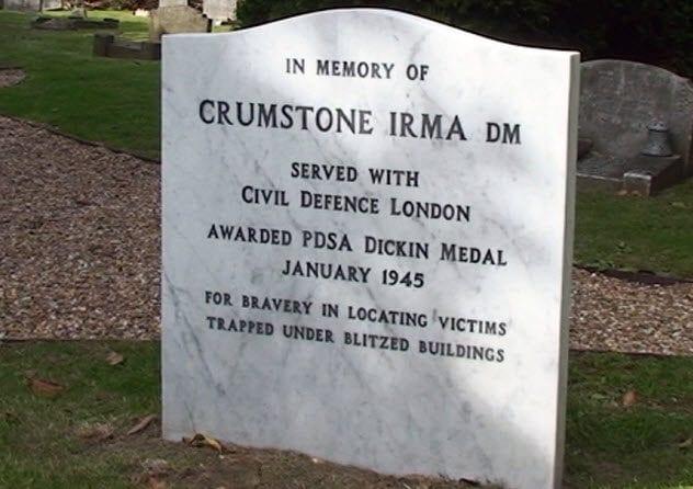 6-irma-memorial