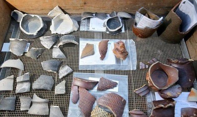 Disposable Ceramic Cups