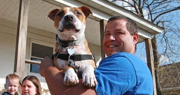 Photo of 10 Incredible Pets That Returned Home After Years Of Being Lost