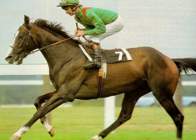 8-shergar-jockey-swinburn
