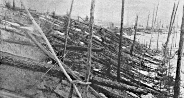 9a-fallen-trees-tunguska-event
