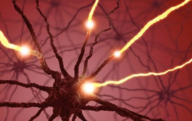 neurons-body-recognition