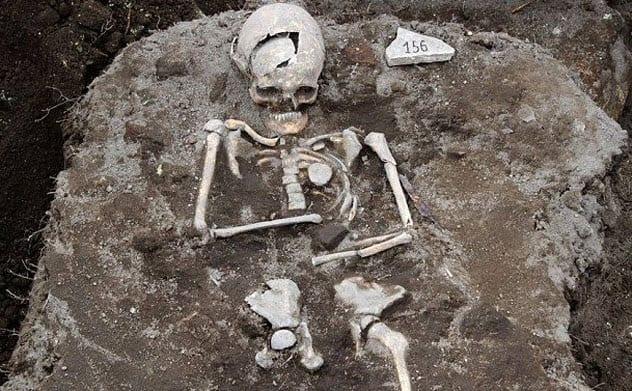 8-staked-skeleton
