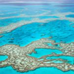 Top 10 Fresh Facts About The Great Barrier Reef