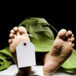 10 Ways The Dead Can Help The Living After They Are Gone