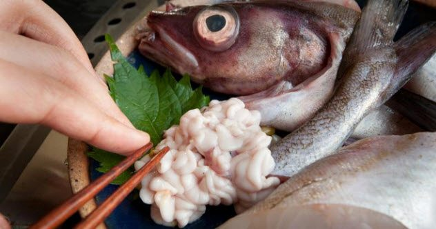 10 Strangest Japanese Foods