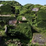 10 Places That Plants Took Back