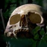 10 Creepy Facts About Body Farms, The Graveyards Of Science