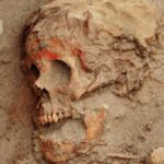 Top 10 Ancient Cases Of Rare And Bizarre Skeletons