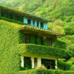 10 Abandoned Places Being Reclaimed By Nature
