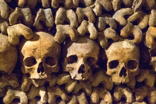 Corpses in Catacombs of Paris