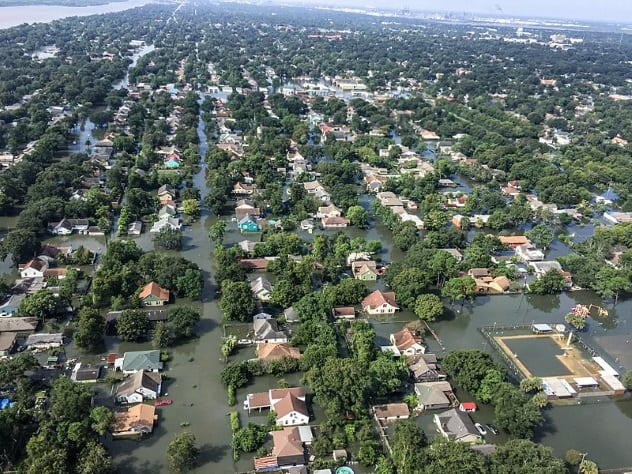 Natural disasters cost Tampa Bay area businesses $304M in ... |Texas Natural Disasters List