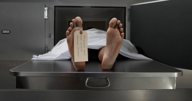 Photo of 10 Fascinating Facts About A Corpse That Helped The Allies Win World War II