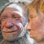 Top 10 Amazing Recent Revelations About Neanderthals