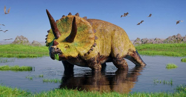 Photo of 10 Fascinating Peeks Into The Daily Lives Of Dinosaurs