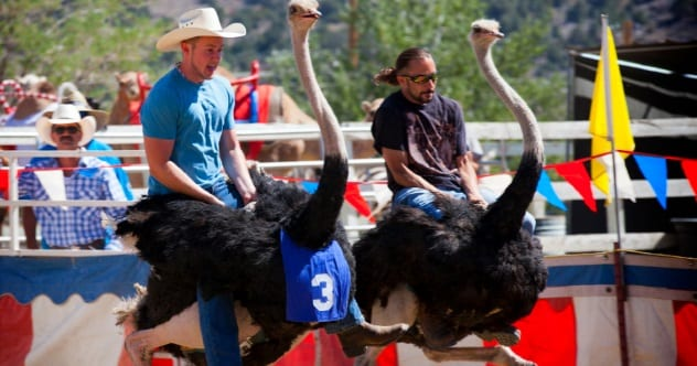 10 Of The World's Most Bizarre Sports