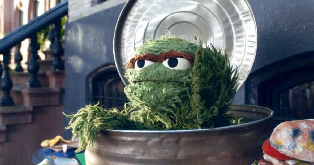 Photo of 10 Wacky Facts You Don't Know About Oscar The Grouch