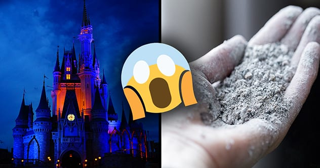 Photo of Top 10 Creepy Things You'll Only Find In The Disney Parks