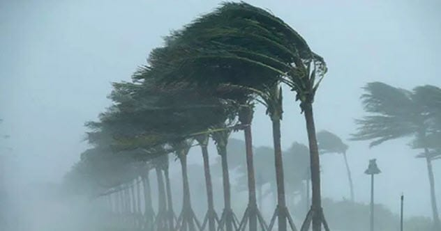 Photo of Top 10 Times Hurricanes Left Strange Things Behind
